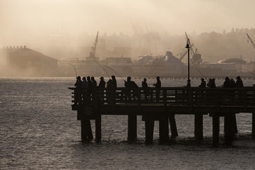 Salmon Fishermen on Elliott Bay in Seattle, Washington. On an early foggy morning on a pier in West Seattle, fishermen jig for salmon with the Port of Seattle cranes in the background.