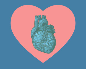 Blue human heart wireframe on heart symbol shape