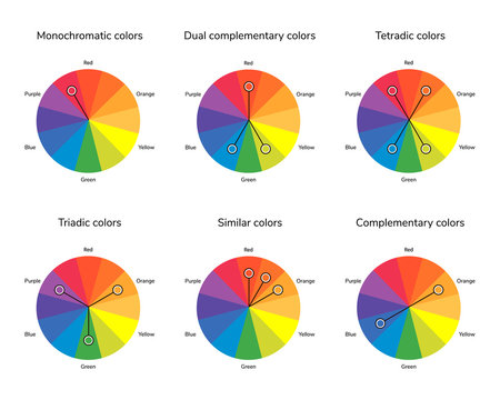 vector illustration of color circle, complementary, analogous