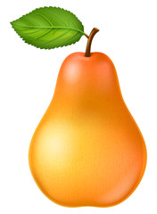 Ripe pear. Vector illustration.