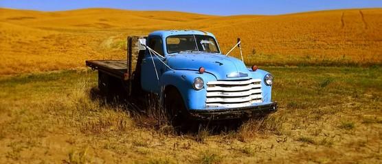 Palouse Blue