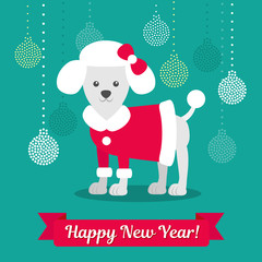 Vector illustration. Poodle in a coat against the background of Christmas balls. Christmas picture for decoration. Year of the dog.
