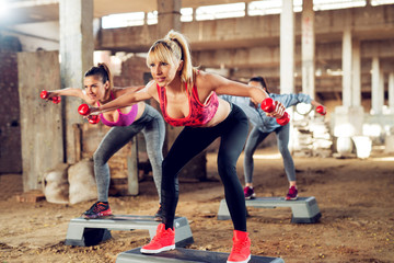 Attractive fitness girls exercising step aerobics outside the gym with dumbbells.