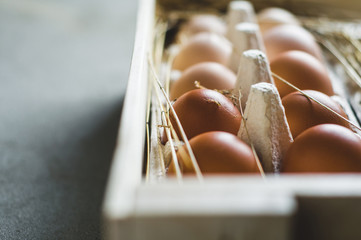 Chicken eggs in a box on a grey concrete background