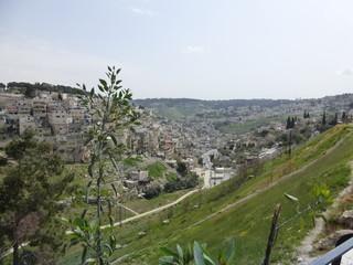 Jerusalem im Frühling, Blick ins Tal Richtung Davidstadt, Derech HaShiloah und Gihonquelle