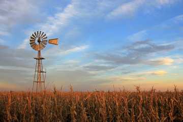 Autocollant pour porte Texas Texas style westernmill windmill at sunset, Argentina, South America