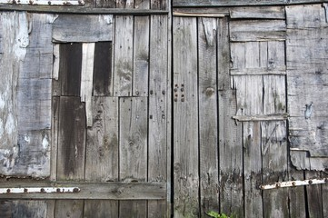 background of wooden old doors made of planks