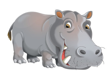 cartoon animal hippo - illustration for children