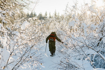 Man walking through snow covered tree along a snow-covered trail during the day in the winter