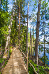 Wooden paths along the lake in the spring forest of Karelia