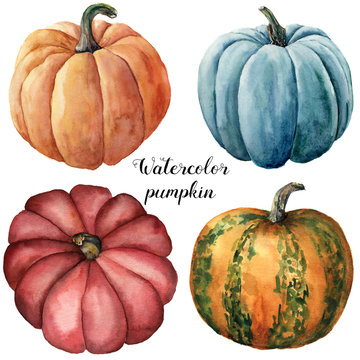 Watercolor pumpkins. Hand painted red, blue, orange and orange with green stripes pumpkins isolated on white background. Botanical illustration for design. Halloween print.