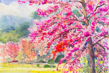 Landscape painting colorful of Wild Himalayan Cherry