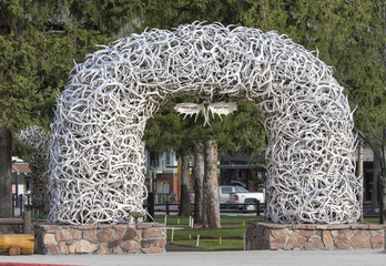 Jackson Hole Wyoming moose antler sign with elk arches Wall mural