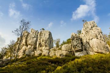 Der Pfahl im bayerischen Wald