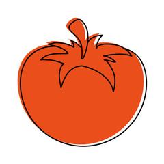 whole tomato icon image