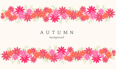 Autumn cosmos illustration