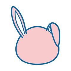 isolated cute rabbit face
