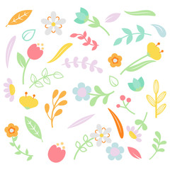Colorful Foliage Collection In White Background