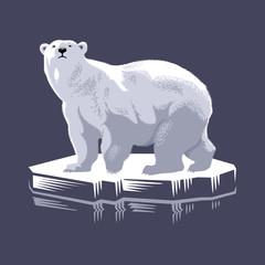 Белый медведь на льдине, иллюстрация, вектор