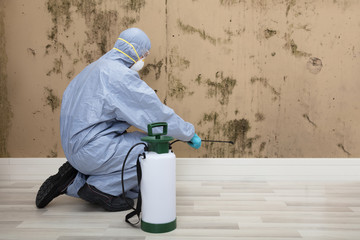 Pest Control Worker Spraying Pesticide On Wall With Sprayer