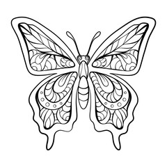 Black and white butterfly with patterned wings.