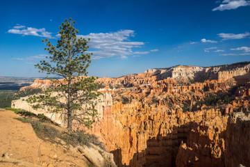 Aussicht aufs Amphitheater im Bryce Canyon National Park, Utah