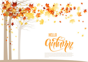 Orange autumn trees banner