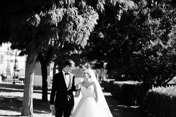 Fantastic wedding couple walking in the park on their wedding day. Black and white photo.