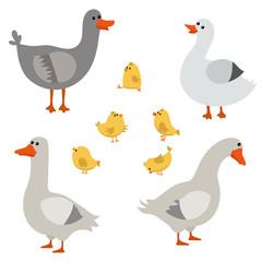 Set of cute geese