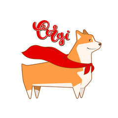 Vector dog corgi in hero cape. Breed inscription in calligraphy handmade design.