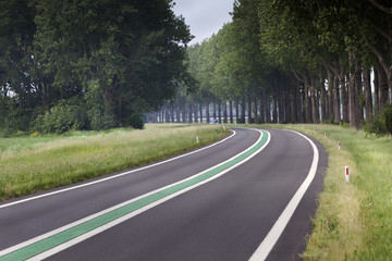 Motorway with green line in the Netherlands
