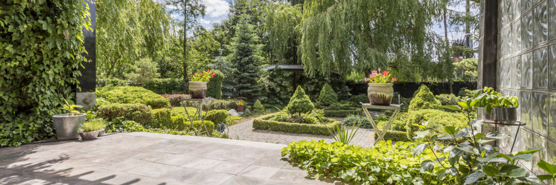 Green garden with concrete paths