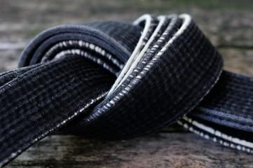 Black belt master of martial arts.