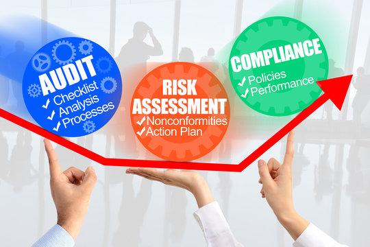 Internal Audit Process management