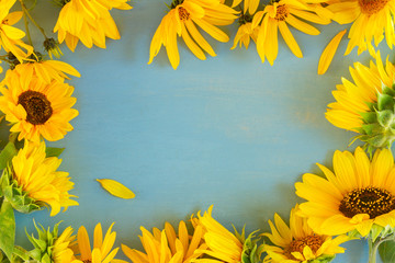 Fresh Sunflowers on blue wooden background frame with copy space