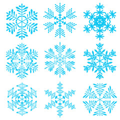 A set of snowflakes. Vector snowflakes on a white background.