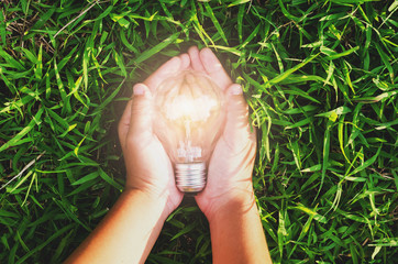 hand hold light bulb on grass  with sunset power energy concept