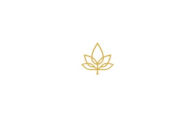 maple, leaf, cannabis, luxury, emblem symbol icon vector logo