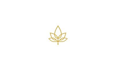 maple, leaf, cannabis, luxury, emblem symbol icon vector logo