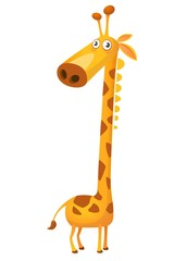 Cartoon funny cute giraffe. Vector illustration isolated on  white background