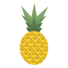 pineapple on the white