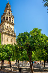 Bell tower  and Patio de los Naranjos of the Mosque-Cathedral, the Mezquita in Cordoba, Andalucia, Spain, Europe
