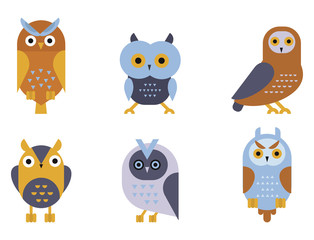 Cartoon owl bird cute character symbol sleep sweet owlet vector illustration.