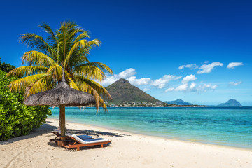 Poster Palmier Loungers and umbrella on tropical beach in Mauritius