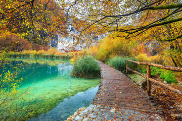 Wall Mural - Breathtaking tourist pathway in colorful autumn forest, Plitvice lakes, Croatia