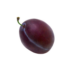 One large ripe blue plum