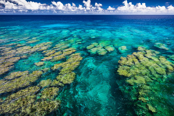 Tropical coral reef on Upolu island, Samoa, perfect for snorkling