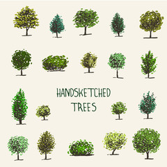 Set of hand drawn graphic trees