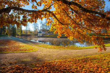 Bright colorful view of fall foliage in a park with a pond and rotunda. Golden tree at the foreground