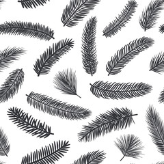 black and white seamless pattern with fir pine evergreen conifer twigs branches